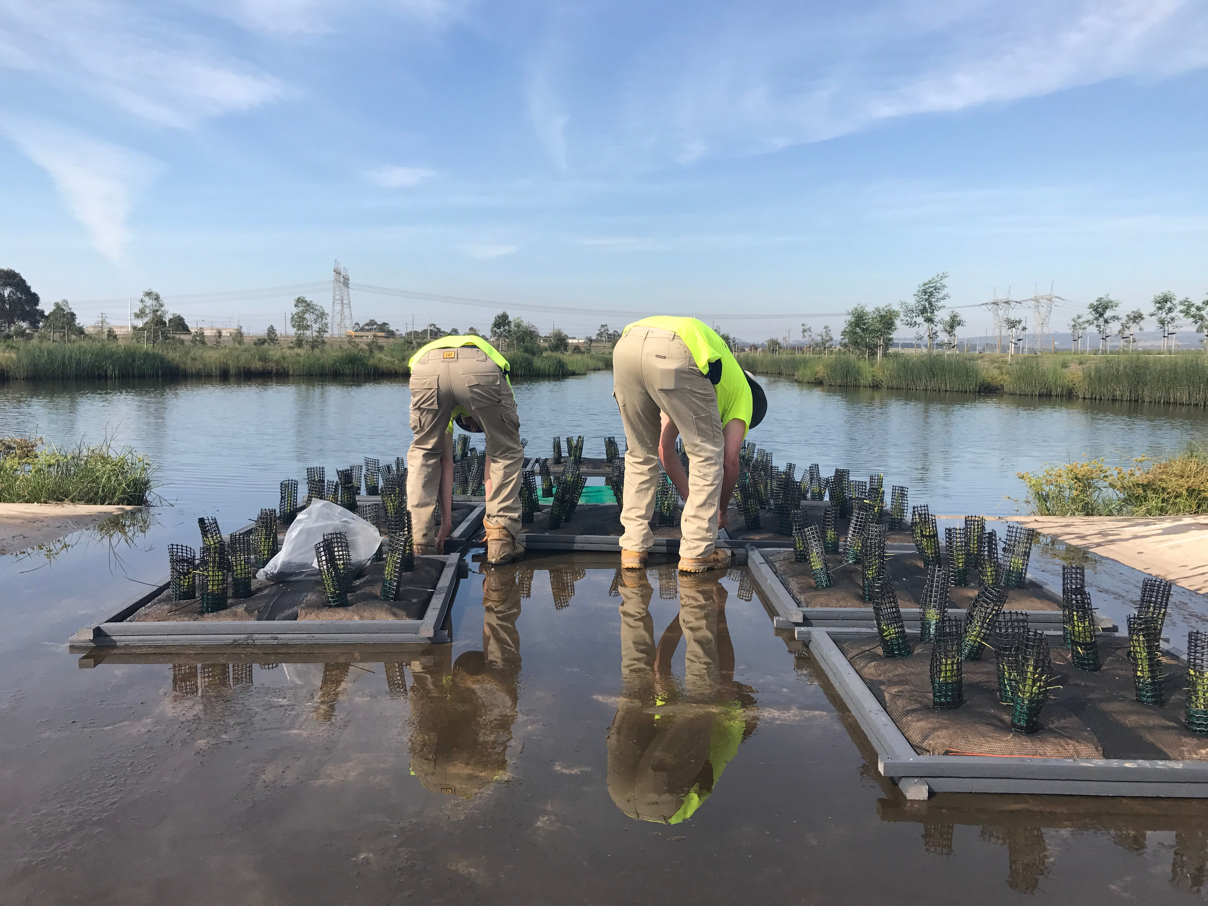 Floating Wetland Panel Installation - Adding aquatic plants to beautify dam and boost filtration.