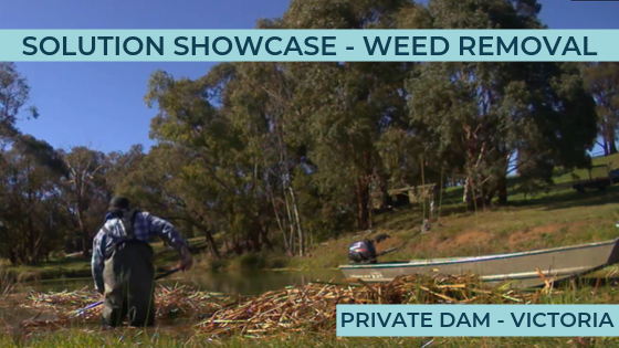 Removing Aquatic Weed From Dams