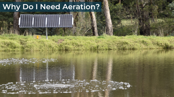 Why Do I Need Aeration - Boosting oxygen levels, cleaning and clearing your dam water and more great reasons to aerate your pond, lake or dam.